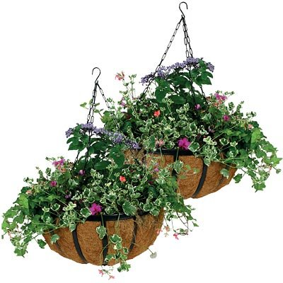 - Traditional Black Metal Hanging Flower Basket with Coco Liner, 10 Inches (Pack of 2)