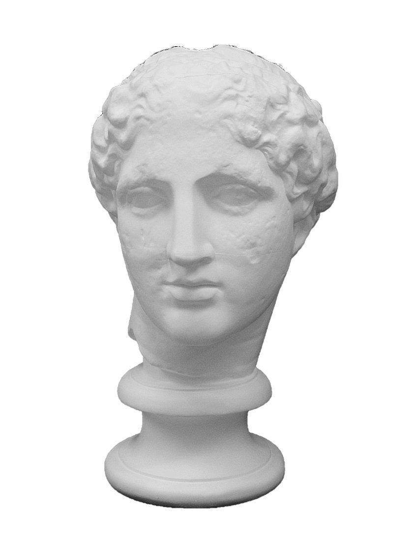 石膏像 S-202 パルテノン首像(ラボルト) H.55cm B008ET45MS