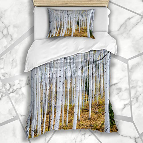 - Ahawoso Duvet Cover Sets Twin 68X86 Maroon Autumn Grove Aspen Trees Rocky Mountains Colorado Bark Abstract Nature Green Vail Bells Birch Microfiber Bedding with 1 Pillow Shams