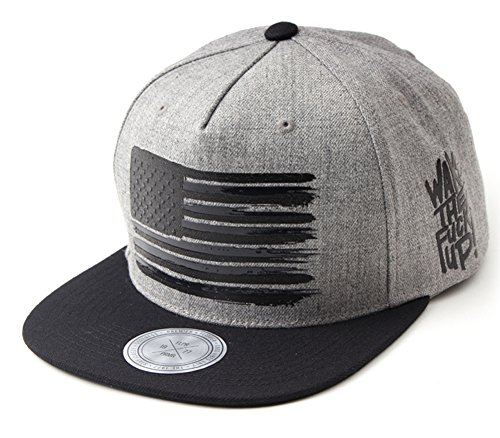 Flipper American Flag Star & Stripes Printed Flat Brim Bill Adjustable Kpop Korean Baseball Cap Hip Hop Snapback Hat for Men Women (Gray) (Flat Cap Brim)