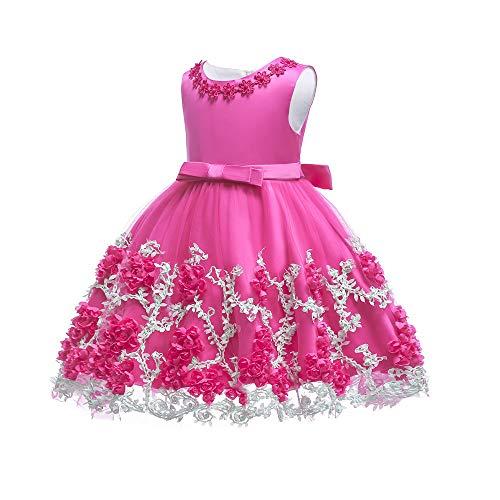 Flower Dresses Baby Toddler Girl Birthday Wedding Elegant Princess Tulle Lace 3D Floral Infant Biaptism Easter Dresses Rose Red 24 M 18-24 Months