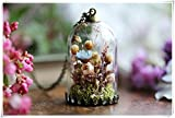 dried flower locket , bell jar pendant, jewellery, real floral pendant, moss terrarium。
