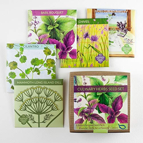 Hudson Valley Seed Company, Culinary Herbs Seed Set,Organic,Heirloom, Non-GMO, 5 Varieties for Planting, Dill, Chives, Parsley, Basil, Cilantro