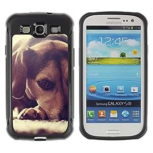 ZETECH CASES / Samsung Galaxy S3 I9300 / BEAGLE PUPPY SMALL DOG FOXHOUND / beagle perrito pequeño perro raposero / Robusto Caso Carcaso Billetera Shell Armor Funda Case Cover Slim Armor