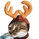 Autumn Water Pet Dog Cat Clothes Costume Halloween cat hat Scarf Suit Cloak Dress up Year pet Costume Cloak Christmas Clothes