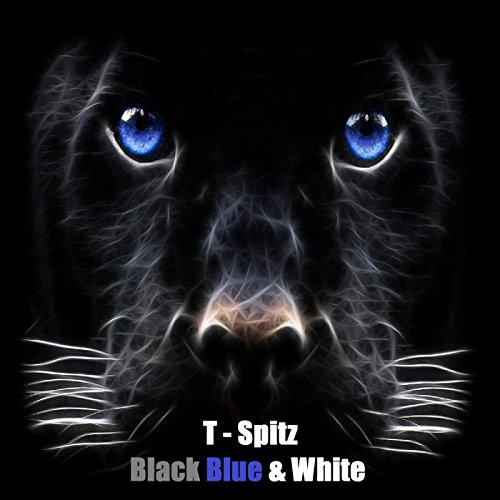 .com: Black Blue & White (Panthers Nation): T-Spitz: MP3 Downloads