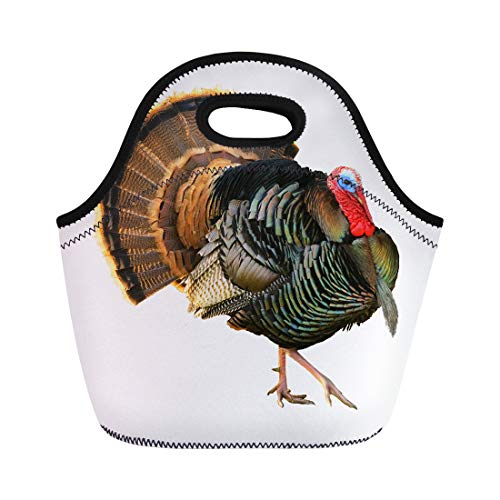 Semtomn Neoprene Lunch Tote Bag Turkey Tom Strutting His Stuff Red Wattles and Blue Reusable Cooler Bags Insulated Thermal Picnic Handbag for Travel,School,Outdoors,Work