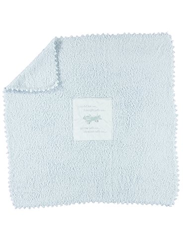 Looking for a barefoot dreams baby blanket blue? Have a look at this 2020 guide!