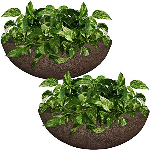 (Sunnydaze Percival Flower Pot Planter Bowl, Outdoor/Indoor Ultra-Durable Double-Walled Polyresin, UV-Resistant Sable Finish, Set of 2, Large 21-Inch Diameter)