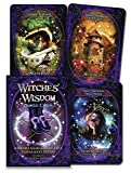 img - for Witches' Wisdom Oracle Cards book / textbook / text book