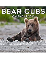 Bear Cubs Calendar 2022: 16-Month Calendar, Cute Gift Idea For Newborn Bear Lovers Women & Men