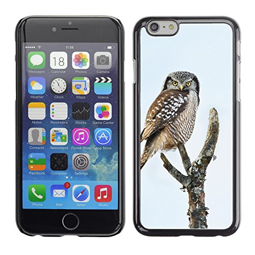 "Premio Sottile Slim Cassa Custodia Case Cover Shell // F00013428 oiseau // Apple iPhone 6 6S 6G PLUS 5.5"""