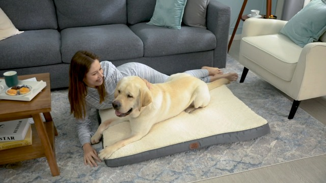 Bedsure Large Orthopedic Foam Dog Bed for Small, Medium, Large and Extra Large Dogs Up to 50/75/100lbs - Orthopedic Egg-Crate Foam with Removable Washable Cover - Water-Resistant Pet Mat