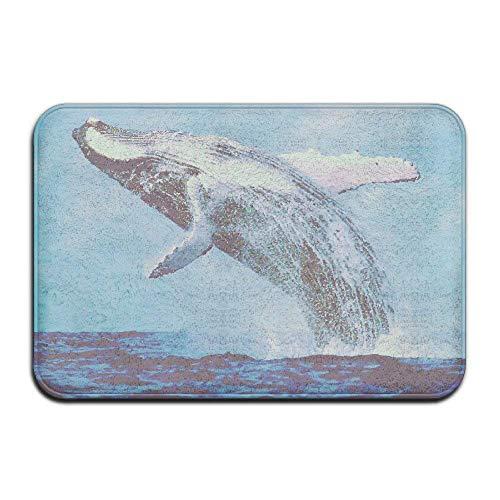 Merle Swinburne Whale Watching in Monterey Bay Front Door Mat 4060 cm