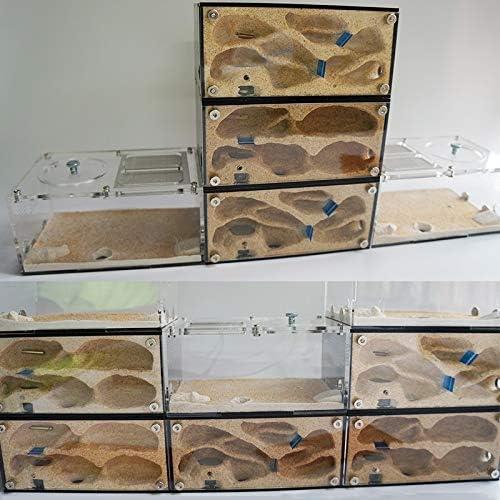 Acryl Ant Farm splicefähigen Ant Nest Mit intelligenter Temperaturregelung Beton Ant Haus Anthill Pet Werkstatt 15x10x13.5cm (Color : With thermometer)