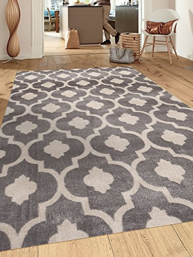 Moroccan-Trellis-Contemporary-Indoor-Area-Rug
