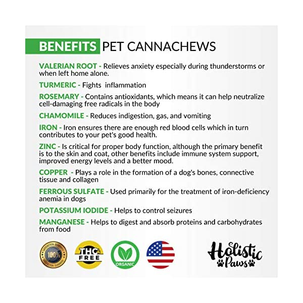 Holistic Paws 5 mg Canna Chews