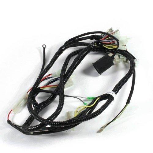 Wiring Loom for SB50QT-16(B08) (WRLM047):