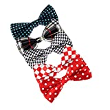 Dan Smith DBF0120 Multi Poly Pre-Tied Bow Ties For Wedding Mens 5 Package Pre-tied Bowties Set Gift Ideas