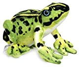 VIAHART Frisco The Frog   10 Inch Poison Dart Tree Toad Stuffed Animal Plush   by Tiger Tale Toys