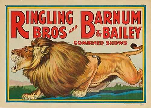 Ringling Bros and Barnum and Bailey - Combined Circus (lion) USA c. 1928 - Vintage Poster (36x54 Giclee Gallery Print, Wall Decor Travel Poster)