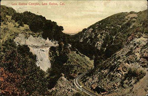 Amazon.com: Los Gatos Canyon Los Gatos, California Original Vintage Postcard: Entertainment Collectibles