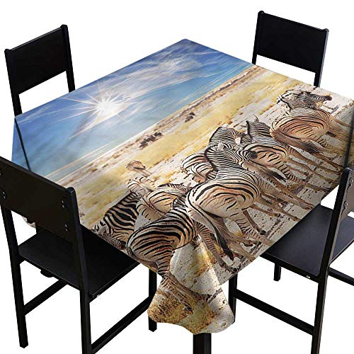 haommhome Oil-Proof and Leak-Proof Tablecloth Africa Africa Safari Park Washable Tablecloth W36 xL36 for Kitchen Dinning Tabletop -