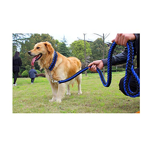 JRPets Dog Leash 5 feet Two-Color Collar Eight-Strand Rope P-Chain Large Medium Dog Labrador, Golden Retriever,Shepherd Dog, Leash and Collar Combination (XL, Blue and Black Combination)