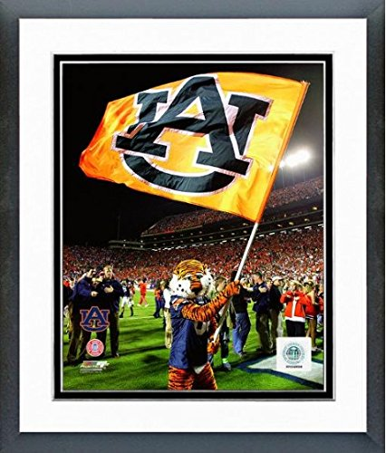 Auburn University Tigers Mascot 2006 Photo 12.5