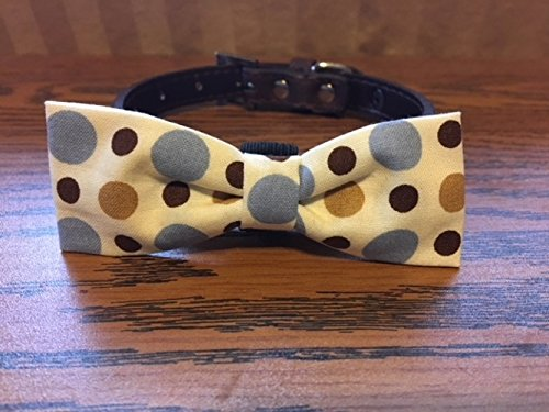 Brown & Blue Dots-Dog Bow Tie by Creations by Glo