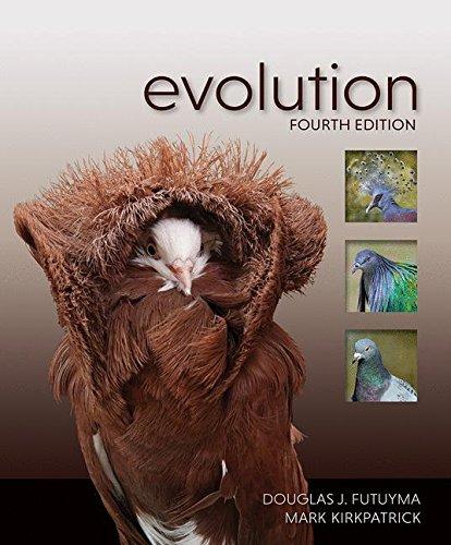 1605356050 - Evolution