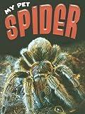 Spider, Michelle Lomberg, 1605960950