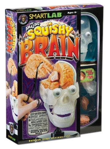 [SmartLab Toys The Amazing Squishy Brain] (Amazing Toys Lab)