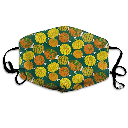 Liayai7. Pumpkin Pattern Halloween Dust,Face Mask Washed,Reusable Outdoor Activities Windproof 7 X 4.3 Inch Mouth Masks ()
