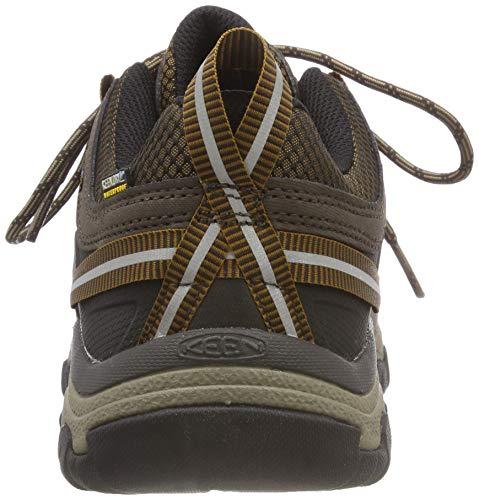 Keen 0 Chaussures Marron Golden Hommes Et Brown big Iii Targhee Basses Pour Randonne Bend tanches De ZqZIvrKw