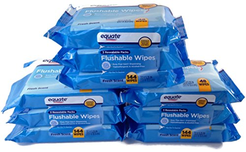 Equate Fresh Scent Flushable Wipes 48ct Pack of 9 (432 Wipes Total)