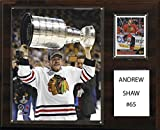 NHL Chicago Blackhawks Andrew Shaw 12 x 15-Inch Player Plaque