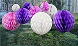 Daily Mall 9Pcs 3 inch 6 inch 8 inch Art DIY Tissue Paper Honeycomb Balls Party Partners Design Craft Hanging Pom-Pom Ball Party Wedding Birthday Nursery Decor (White Purple Pink)