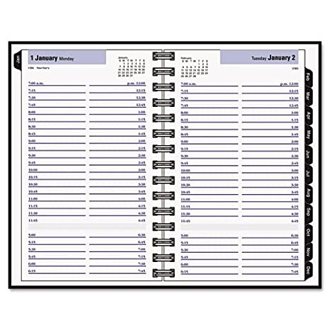 amazon com aagg100h00 dayminder recycled daily appointment book