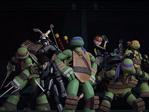 Darkest Plight (Ninja Turtles Sensei)