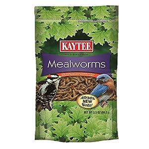 Kaytee Mealworms, 3.5 oz 1