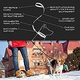 EzyDog Soft Trainer Dog Leash with Traffic