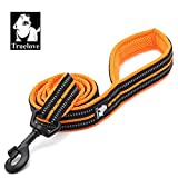 Truelove Dog Leash TLL2111 Puppy Walking Lead Leash,Pet Chain Rope,Handle Traction Rope,Padded Reflective Night Safe Leading Length 200cm Now Available