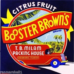 - MAGNET Leesburg Florida Booster Brown's Orange Citrus Fruit Crate Magnet Art Print
