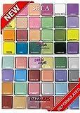 PETAL CRAFTS Palette Dust Set 24 Matte Colors & 24 Dazzler Colors (48 Pack)