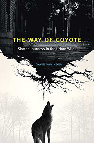 The Way of Coyote: Shared Journeys in the Urban Wilds