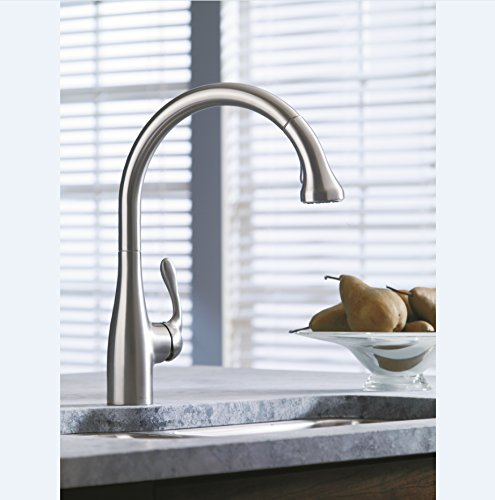 Hansgrohe 06460860 Allegro E Gourmet 2-Spray Professional Style Kitchen Faucet, Pull Out Spout, 1.75 GPM, Steel Optic