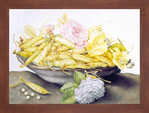 Bowl with Peas by Giovanna Garzoni - 22