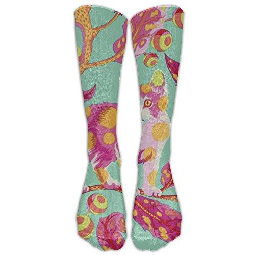 z starter socks - 4