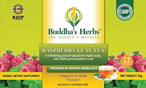 Buddha's Herbs Premium Raspberry Leaf Tea, 22-Count Tea Bags (Pack of (Raspberry Leaf Tea)